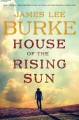 Go to record House of the rising sun : a novel