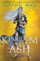 Go to record Kingdom of ash